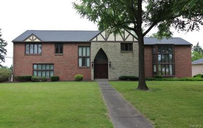 Williamsville Single Family Home For Sale: 413 Dan Troy Drive