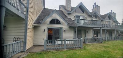 Ellicottville Condo/Townhouse For Sale: 91 Wildflower