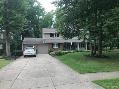 Williamsville Single Family Home For Sale: 20 Dan Troy Drive