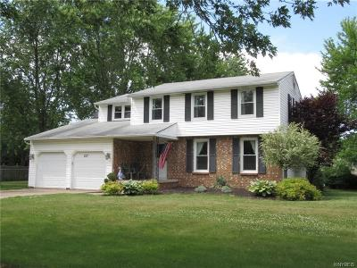 Grand Island Single Family Home For Sale: 227 North Lane