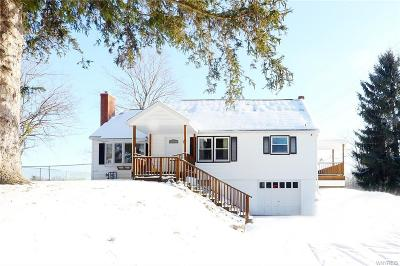 Orchard Park Single Family Home For Sale: 413 Transit Road