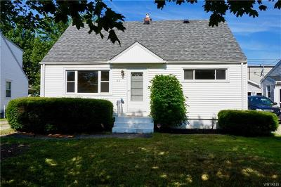 Erie County Single Family Home For Sale: 64 Wallace Avenue