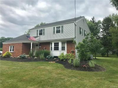 Orchard Park Single Family Home For Sale: 101 Highland Avenue