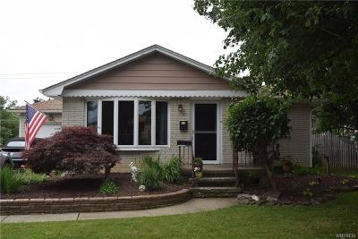 West Seneca Single Family Home For Sale: 40 Muriel Drive