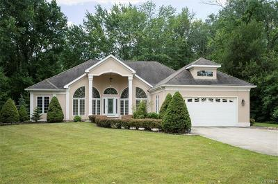 Amherst Single Family Home For Sale: 3973 E Robinson Road