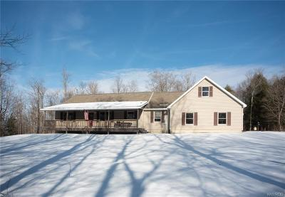 Cattaraugus County Single Family Home For Sale: 5058 Canada Hill Road