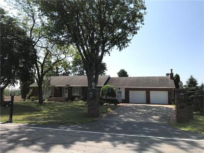 Wheatfield Single Family Home For Sale: 3000 Raymond Road