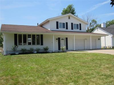 Amherst Single Family Home For Sale: 155 Kaymar Drive