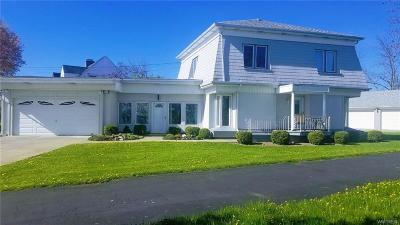 Grand Island Single Family Home For Sale: 1030 E River Road