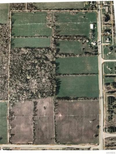 Residential Lots & Land For Sale: 4520 Crittenden Road