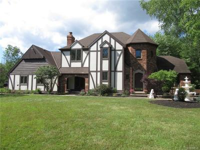 Grand Island Single Family Home For Sale: 2965 Love Road