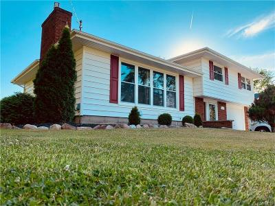 Porter Single Family Home For Sale: 740 Blairville Road
