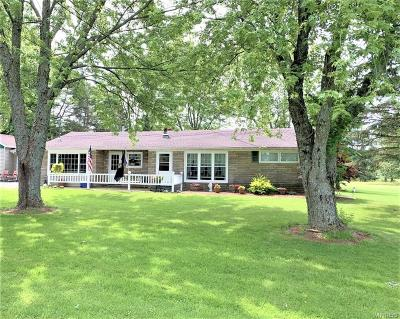 Erie County Single Family Home For Sale: 8809 Heath Road
