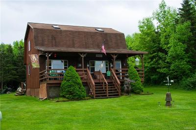 Cuba Single Family Home For Sale: 380 Snyder Road