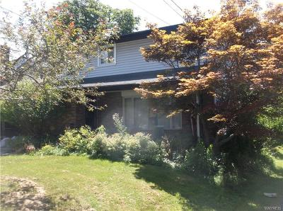 West Seneca Single Family Home For Sale: 3705 Clinton Street