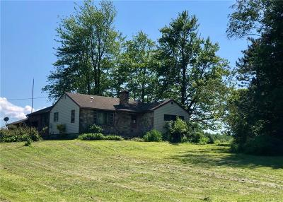 Erie County Single Family Home For Sale: 5569 Shero Road