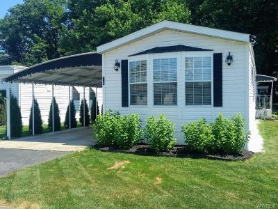 Erie County Single Family Home For Sale: 9233 Main Street