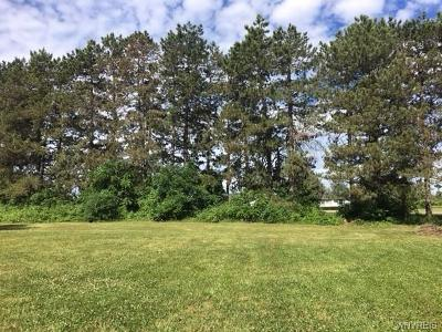 Genesee County Residential Lots & Land For Sale: Vl Hopkins Road