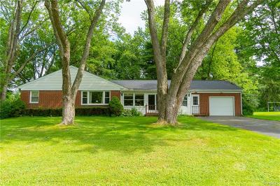 Erie County Single Family Home For Sale: 7261 Woodland Drive