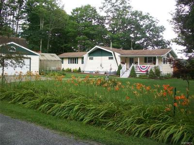 Allegany County, Cattaraugus County Single Family Home For Sale: 8843 Russell Road