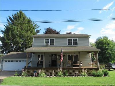 Orleans County Single Family Home For Sale: 100 Eagle Street
