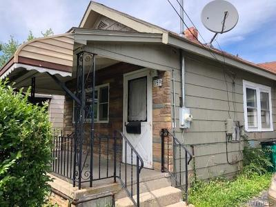 Erie County Single Family Home For Sale: 159 Thompson Street