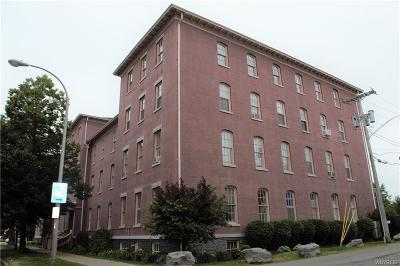 Buffalo Single Family Home For Sale: 125 Edward Street #1C