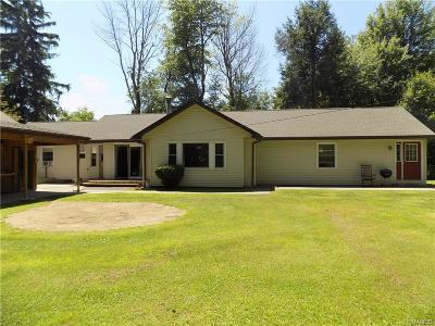 Erie County Single Family Home For Sale: 6782 Versailles Road