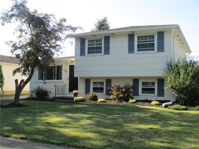 Erie County Single Family Home For Sale: 166 Autumnwood Drive