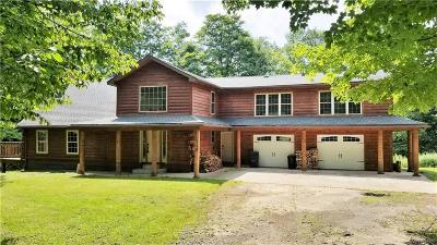 Cattaraugus County Single Family Home For Sale: 6898 Stone Road