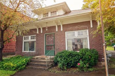 Genesee County Single Family Home For Sale: 10592 Main Street