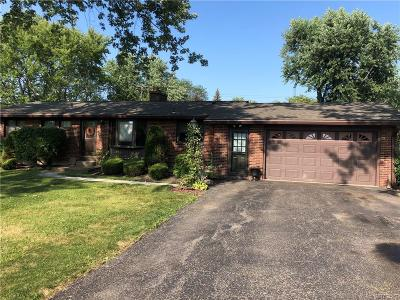 Lewiston Single Family Home For Sale: 5357 Annover Drive