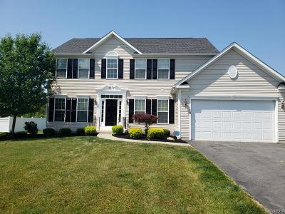 Orchard Park Single Family Home For Sale: 10 Hilltowne Drive