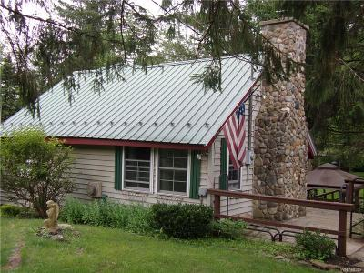 Allegany County, Cattaraugus County Single Family Home For Sale: 8956 Route 219