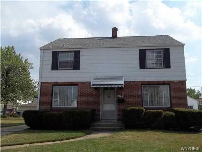 Single Family Home For Sale: 117 Ebling Avenue