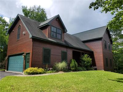 Cattaraugus County Single Family Home For Sale: 7447 Dublin Road