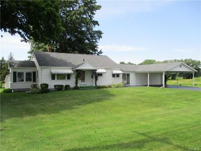 Genesee County Single Family Home For Sale: 9084 Creek Road