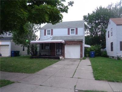 Buffalo Single Family Home For Sale: 64 Hempstead Avenue