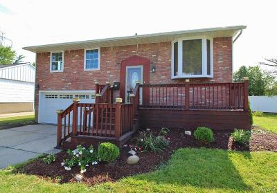 Single Family Home For Sale: 201 Frederick Road