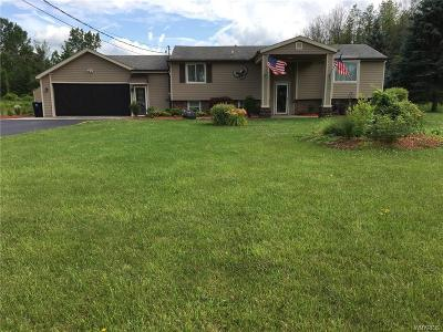 Akron Single Family Home For Sale: 13565 Main Road