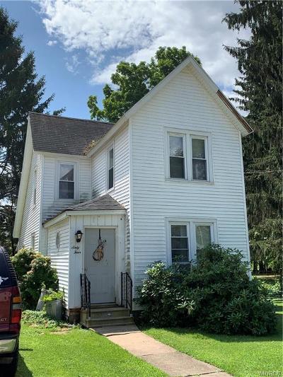 Portville Single Family Home For Sale: 64 Brooklyn Street