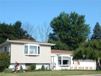 West Seneca Single Family Home For Sale: 66 Greenbranch Road