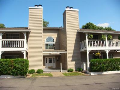 Amherst Condo/Townhouse Pending: 1250 Youngs Road #C