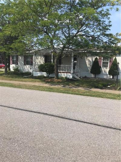 Akron Single Family Home For Sale: 69 Golden Pond