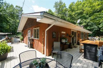 Allegany County, Cattaraugus County Single Family Home For Sale: 1298 Slab City Road