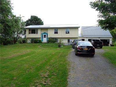 Sheldon Single Family Home For Sale: 3375 Bartz Road