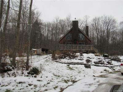 Cattaraugus County Single Family Home For Sale: 4970 Perrault Road