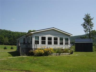 Cuba Single Family Home For Sale: 101 Nys Route 446
