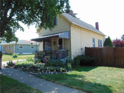Buffalo Single Family Home For Sale: 78 Wheelock Street