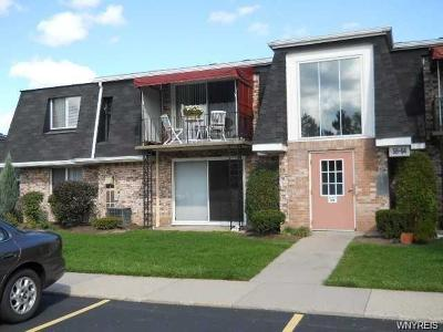 Amherst Condo/Townhouse For Sale: 34b Foxberry Drive